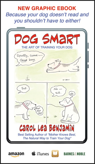 smartbusinesscard